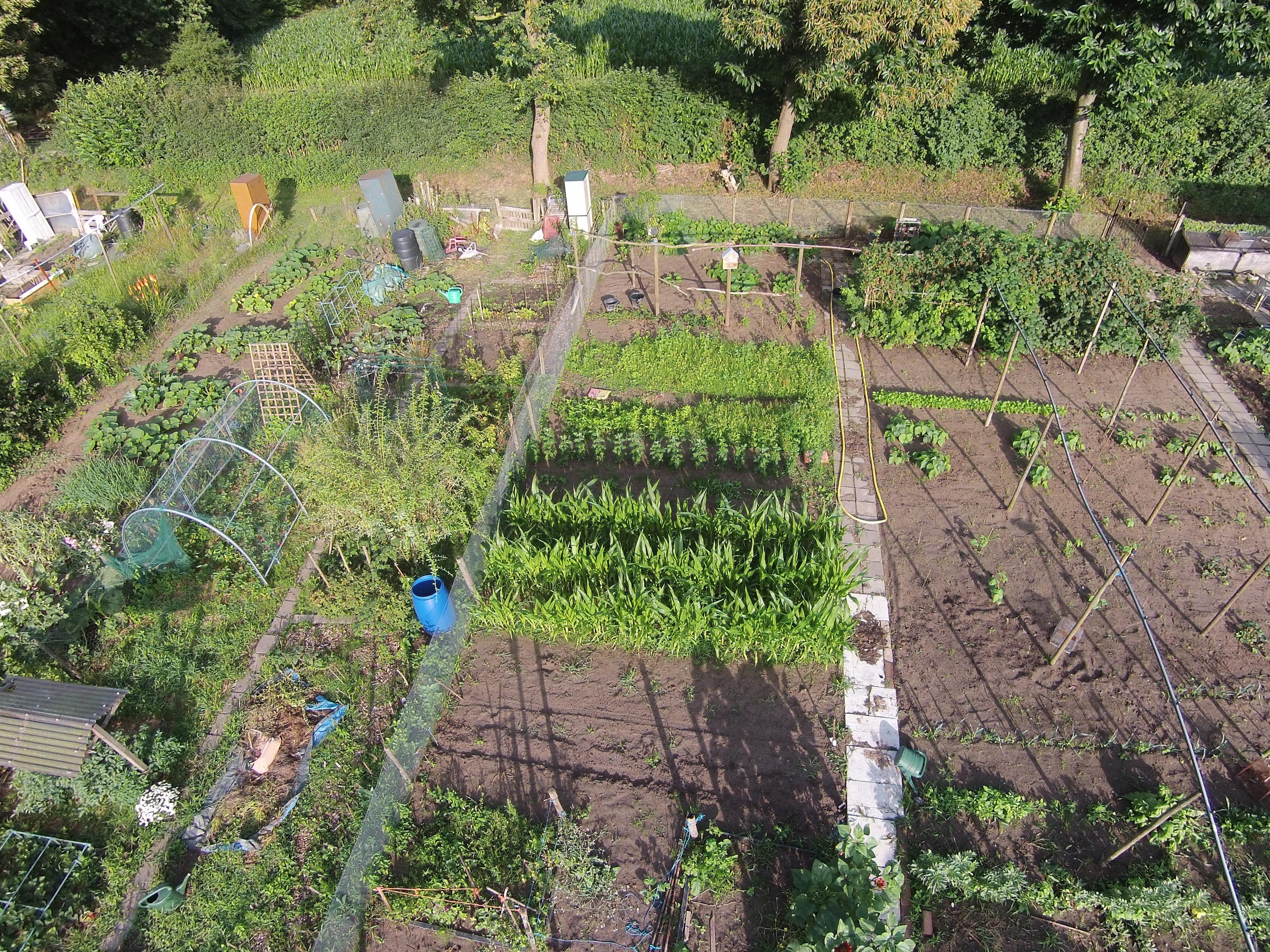 De tuin vanuit een Drone