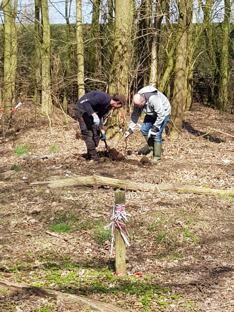Tuinwerkdag maart 2018 en nog meer jonge bomen in het bos