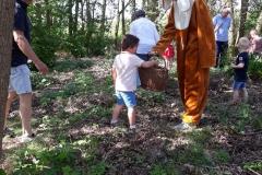 paashaas in het bos