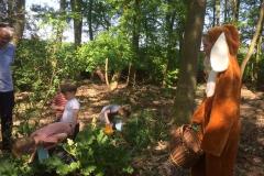 eieren zoeken in het bos