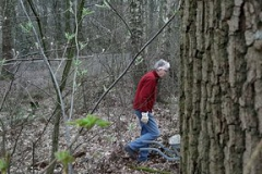 in het bos wordt ook hard gewerkt